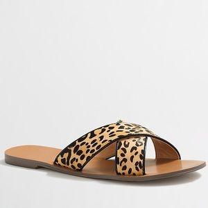 J. Crew Leopard Calf Hair Seaside Sandals 🌿
